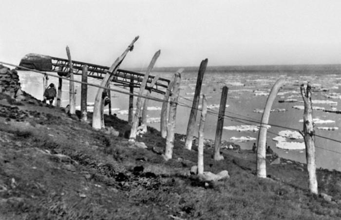 24 факта о жизни на Чукотке, доказывающих, что Крайний Север — это ни на что не похожий мир Рассказ, ADME, Чукотка, Длиннопост, Крайний Север