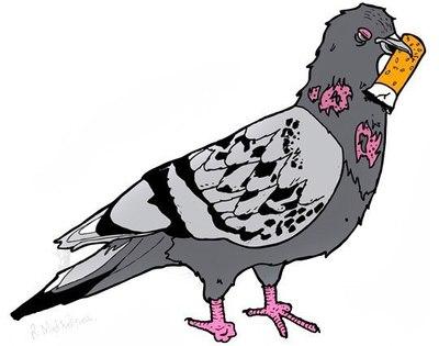 pénzt keresni dühös madarak)
