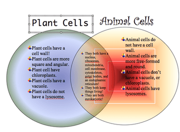 Extra credit compare and contrast the animal cell and the plant cell