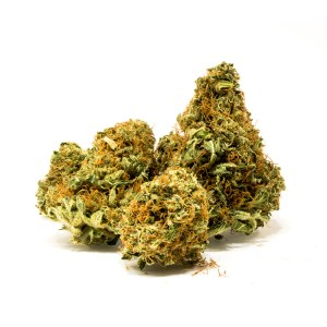 Apple Punch | CSB Farms