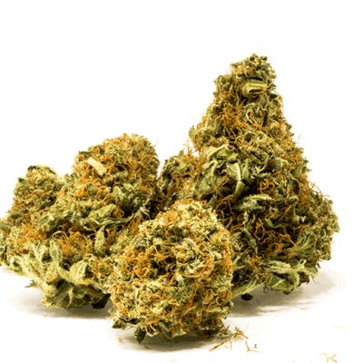 Apple Kush CBD Medical Cannabis