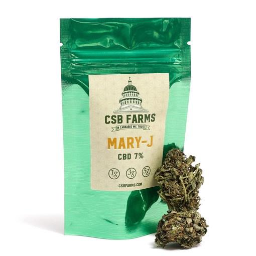Mary-J   CSB Farms