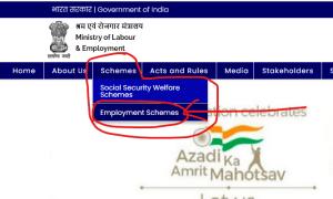 e shram portal employement scheme
