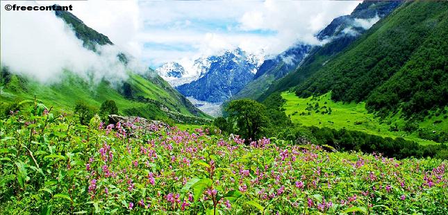 5 natural heritage of india प्राकृतिक और अनोखे भारतीय हेरिटेज साइट एक बार घूमने जरूर जाएं 2019