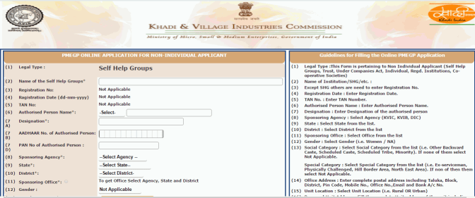 Non-Individual Online apply Form