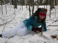 Thinning the forests