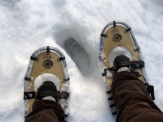 Joe proved that we really needed snowshoes - he took his off and sank two feet!