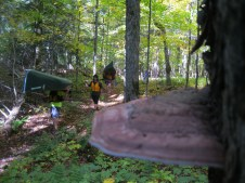 A portage through Sylvania has lots to see-- if you don't have a canoe over your head!