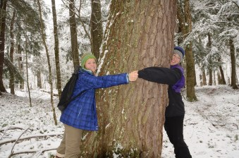 It take two to hug this giant hemlock. Photo by Jeff.
