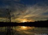 14-08-25 Sunrise by Faulkner