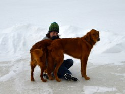 Teddy & Copper comforting Sadie