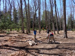 Cleaning up the Loon camp site
