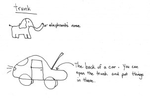 trunk-3-1024x674