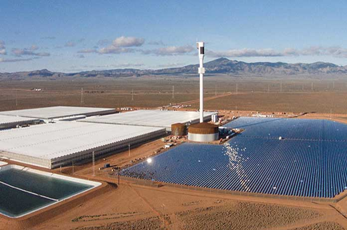 Desert Farm Grows 17,000 Tons of Food without Soil, Pesticides, Fossil Fuels or Groundwater 1