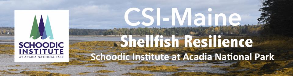 CSI Shellfish Banner