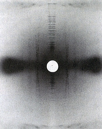 X-ray diffraction pattern obtained from rat-tail tendon (collagen)