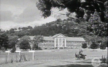 Historical image of a Waite laboratory with horse and cart in the foreground