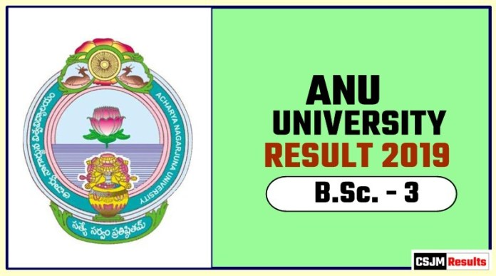 ANU BSc 3rd Year Result 2019