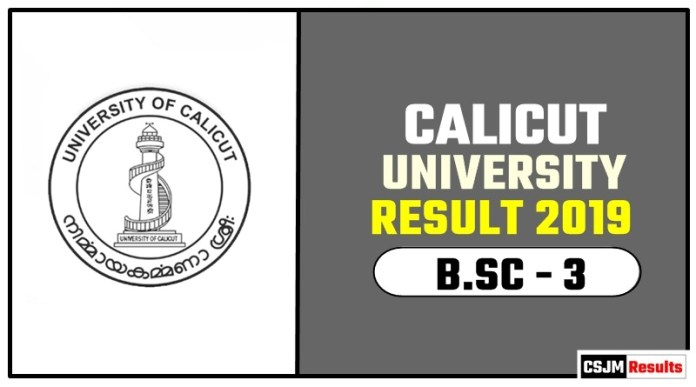 Calicut University BSC 3rd Year Result 2019