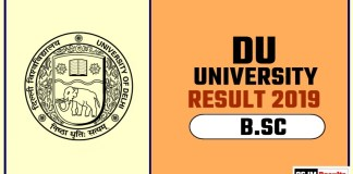 DU BSC 1st 2nd 3rd Year Result 2019 Delhi University