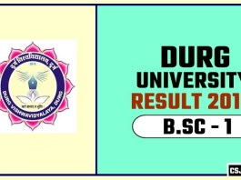 Durg University BSC 1st Year Result 2019