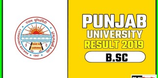 PUCHD BSC 1st 2nd 3rd Year Result 2019 Pujab University