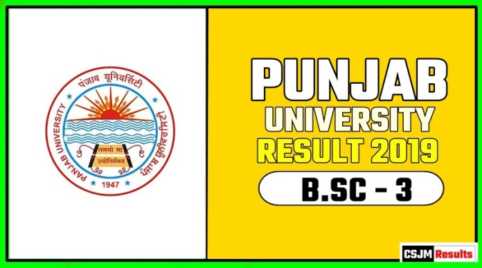 PUCHD BSC 3rd Year Result 2019 Pujab University