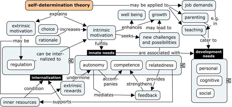 selfdetermination theory  CSL4D