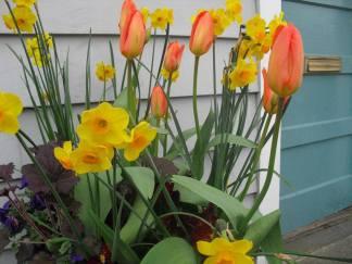 flowers outside of main doorway