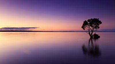 Nourishing the soul – Alimentando tu alma