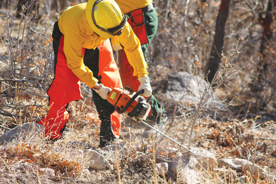 (U.S. Air Force photo/Michael Golembesky) CHEYENNE MOUNTAIN AIR FORCE STATION, Colo. — Firefighters from the Cheyenne Mountain Air Force Station Fire Department remove ground fuels from the interior portion of the installation's perimeter fence. The work is part of a Colorado Parks and Wildlife campaign to mitigate and reduce the risk of wildfires in the area and to help protect the communities and open spaces surrounding the mountain fortress.