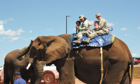 U.S. Air Force photo/Brian Hagberg Carter Salim (left), Capt. Raquel Salim, 3rd Space Operations Squadron, Anna Hagberg and Senior Airman Autumn Hagberg, 4th Space Operations Squadron, ride an elephant during the annual Summer Slam Base Picnic Friday, July 17, 2015, at Schriever Air Force Base, Colorado. The elephant rides were just one of many activities, including a dunk tank, mock deployment line and free lunch, attendees could participate in at the event.