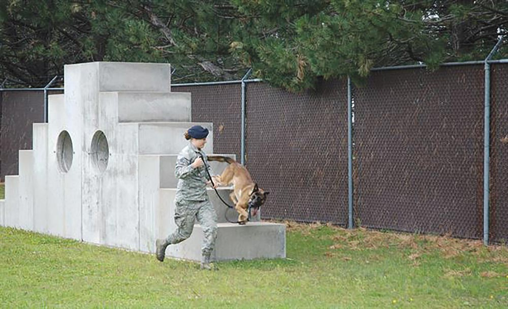 (U.S. Air Force photos by Dave Smith) PETERSON AIR FORCE BASE, Colo. — Senior Airman Amanda Legault, 21st Security Forces Squadron military working dog handler, runs the obstacle course with her K-9 partner, Dano, at the kennels on Peterson Air Force Base, Colo., Sept. 1, 2016. Legault completed an obstacle course and bite training session with Dano.
