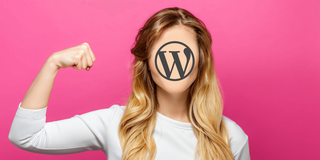 WordPress Powering One Third of Internet
