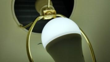 lightbulbs 7