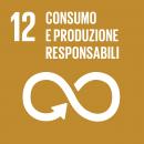 Sustainable Development Goals 12 Consumo e produzione responsabili