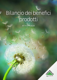 This image has an empty alt attribute; its file name is copertina-bilancio-2020-723x1024.png