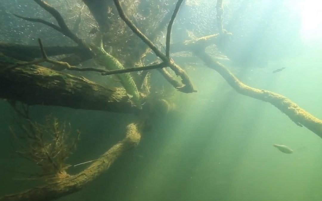 Une légende, une rivière, le LOT