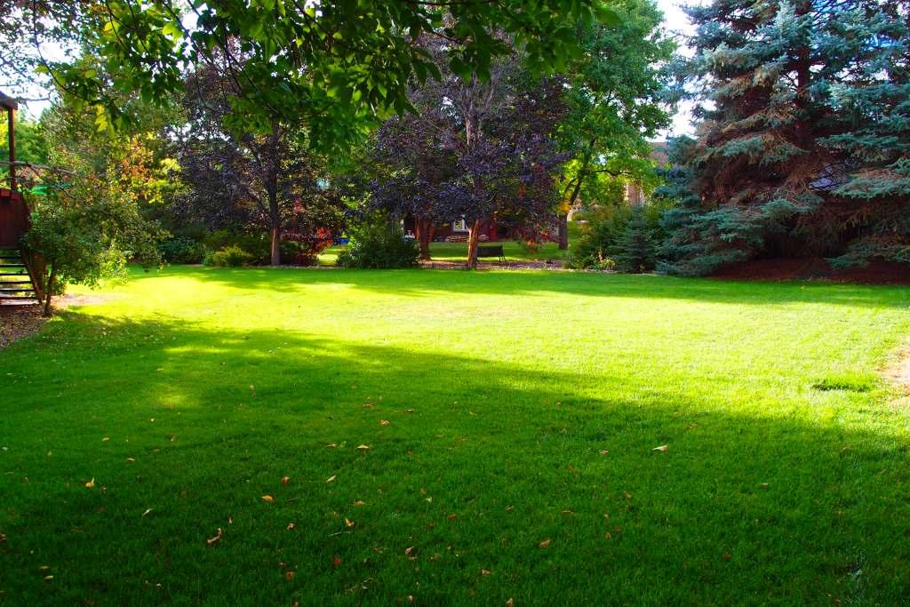 Gladstone Backyard
