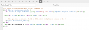 A screenshot of a Details View template showing the conditional output and default helper comments