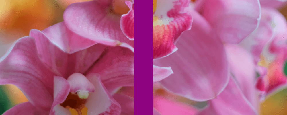 Screenshot. Shows a tall slider with an image background and a tall narrow purple thumb.