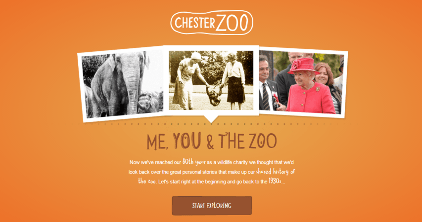 Me, You and the Zoo
