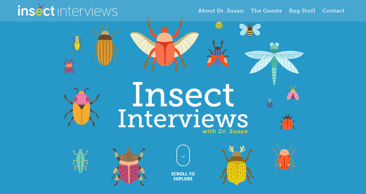 Insect Interviews