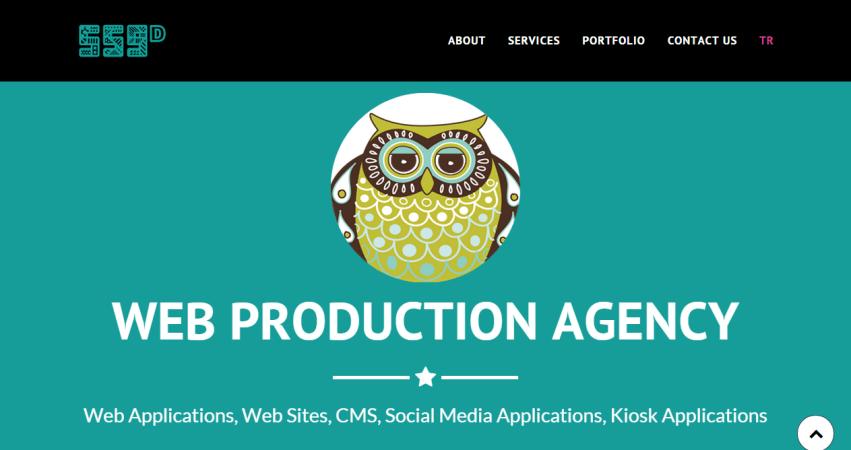 559D Web Production Agency