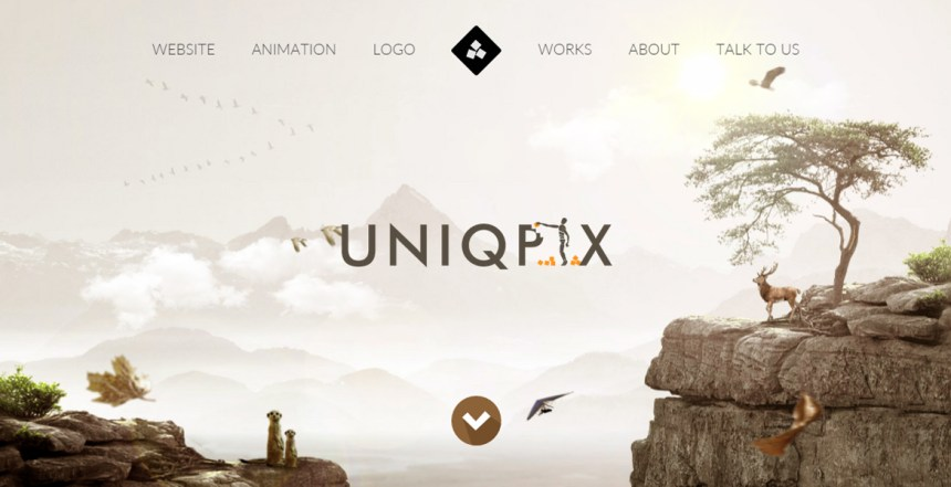 Uniqpix