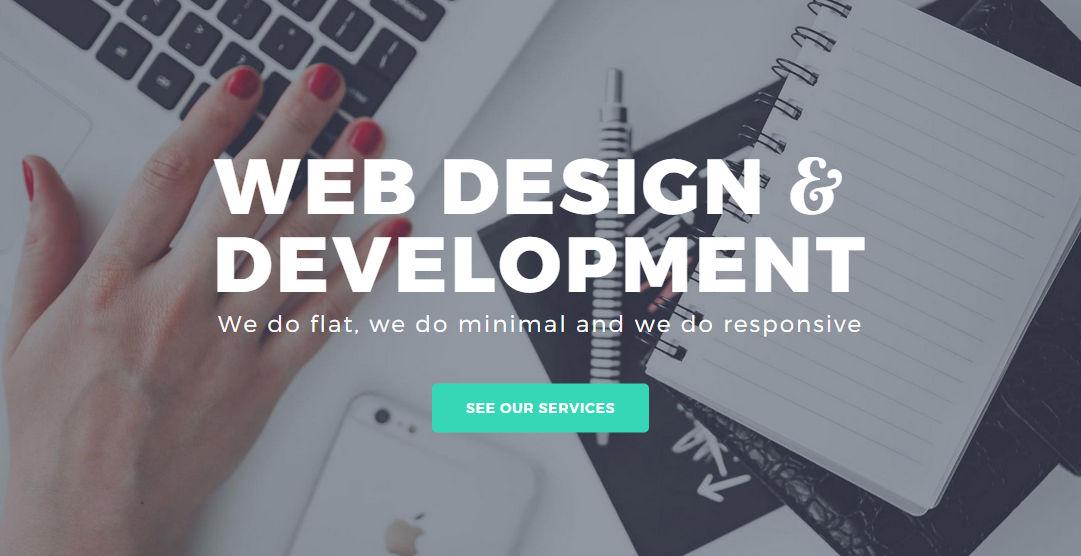 TACO Web Design Studio: Web Design and UX Design