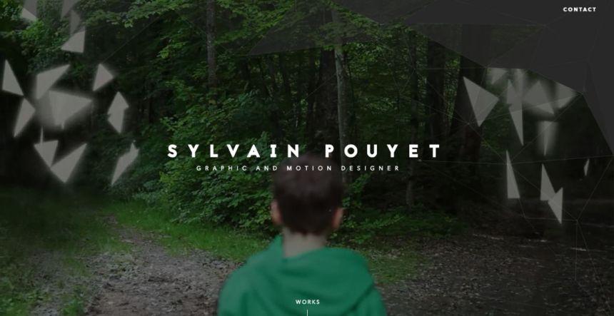 Sylvain Pouyet