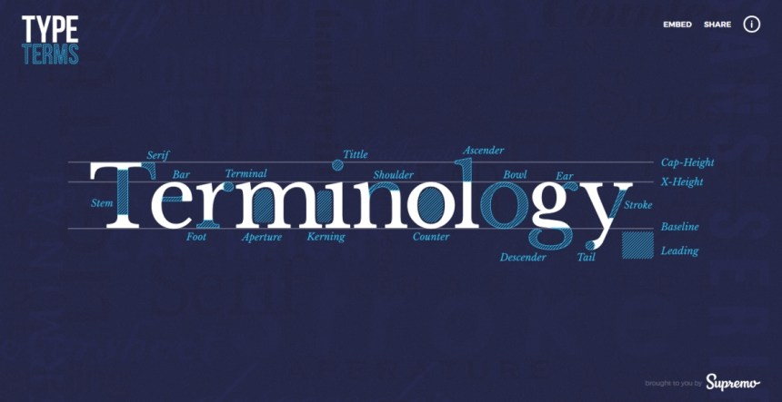 Type Terms