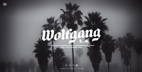 wolfgang_cover1170x600