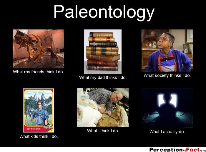Paleontology  What people think I do what I really do  Perception Vs Fact